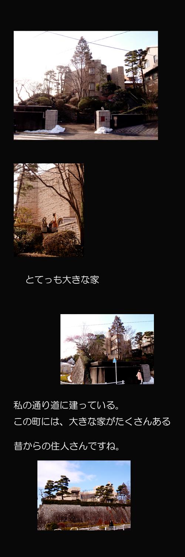家ブログ2.jpg