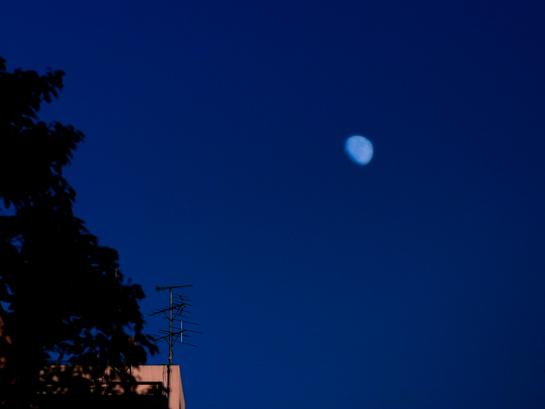 月の滴.jpg