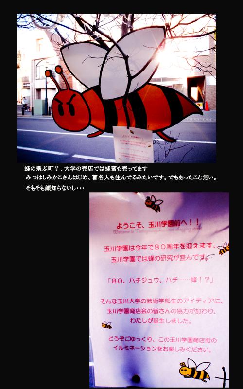玉川学園.jpg.jpg