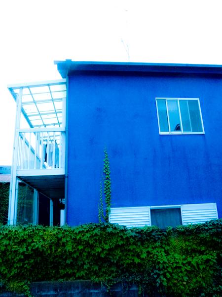 青い家b.jpg