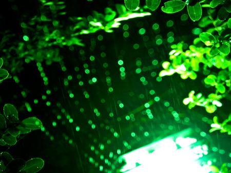 雨の日4b.jpg