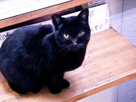 黒猫くんb.jpg